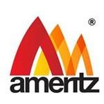 ameritz.co.uk
