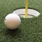 Big Moss Golf