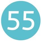 bridge 55
