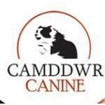 CAMDDWR CANINE UK