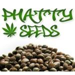 cannabis-seeds-centre.co.uk