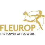 Fleurop Flowers