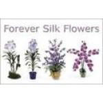 Forever Silk Flowers