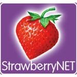 StrawberryNET NZ