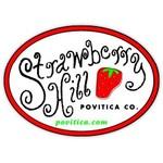 Povitica.com