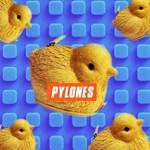 Pylones USA