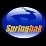 Springbak Inc.