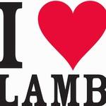 Store.americanlamb.com