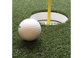 Big Moss Golf coupons or promo codes at bigmoss.com
