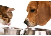 Flint River Ranch coupons or promo codes at flint-river-dog-food.com