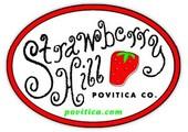 povitica.com coupons or promo codes