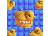 pylones-usa.com coupons and promo codes